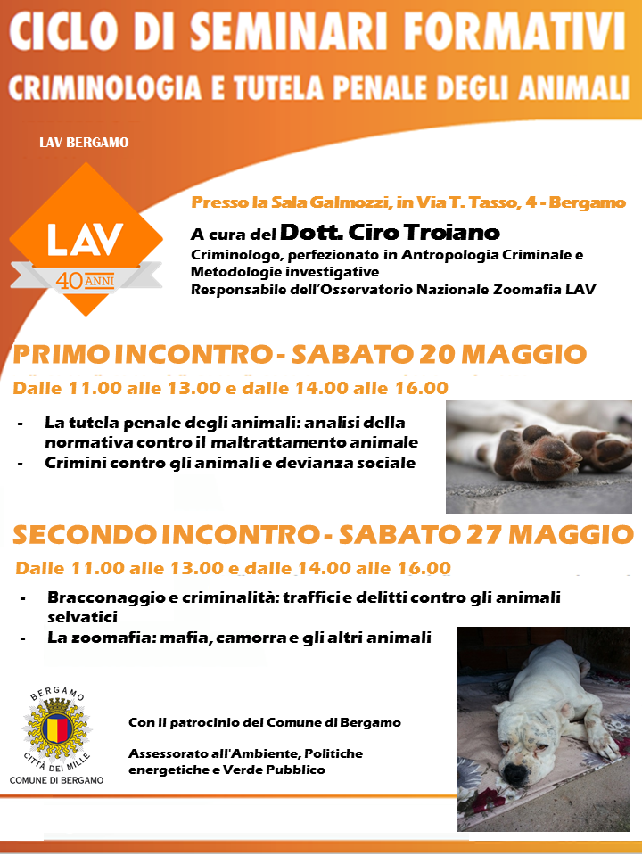 Ciclo Seminari Criminologia
